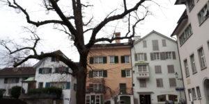 Svizzera Zurigo (5)